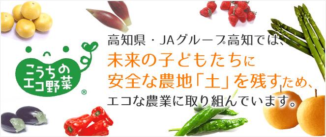 高知県・高知県園芸連では、未来の子どもたちに安全な農地「土」を残すため、エコな農業に取り組んでいます。