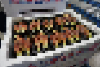 0419000